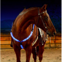LED horse harness chest strap breastplate collar