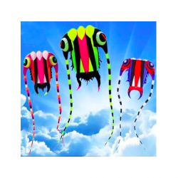 Large kite with line